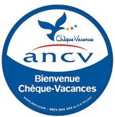 Logo ancv 1 00